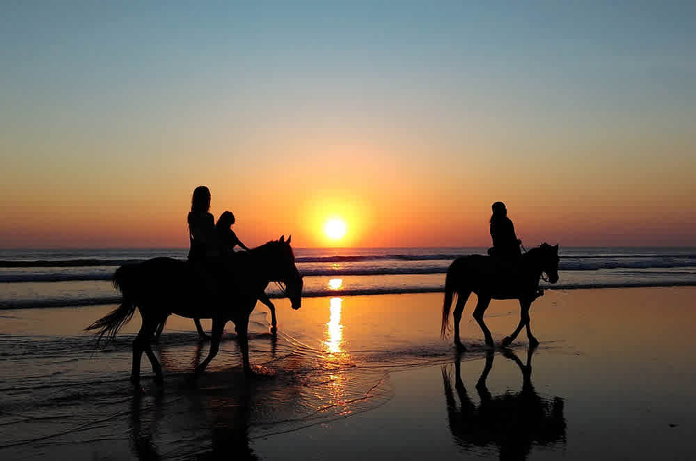 Horse riding, sunset