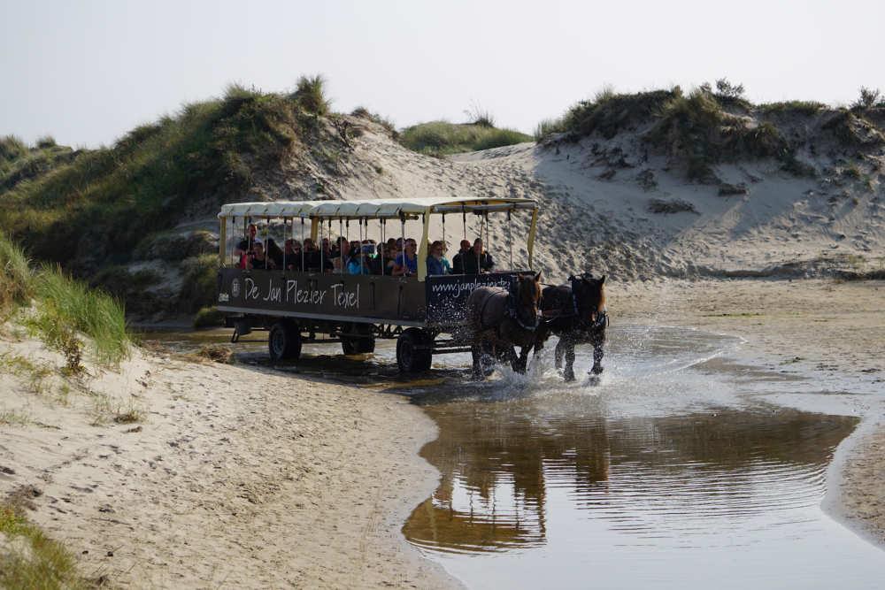 De Slufter, Jan Plezier horsetour
