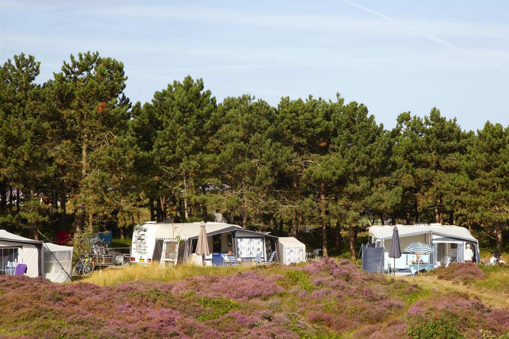 Camping Loodsmansduin, Stellplatz XL mit fließen,
