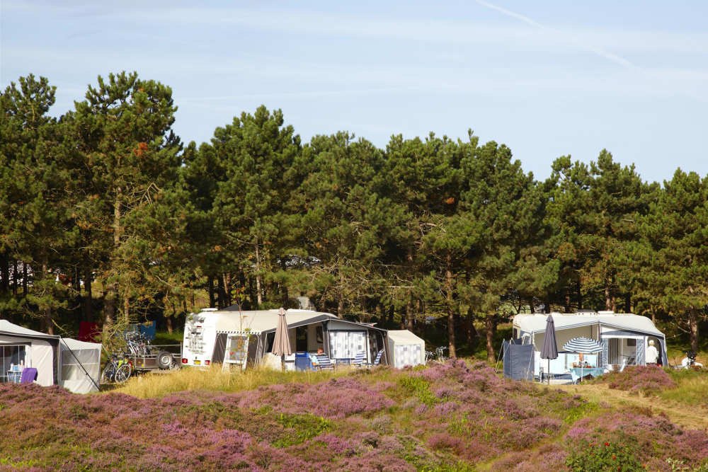 Camping Loodsmansduin, Saisonsplatz