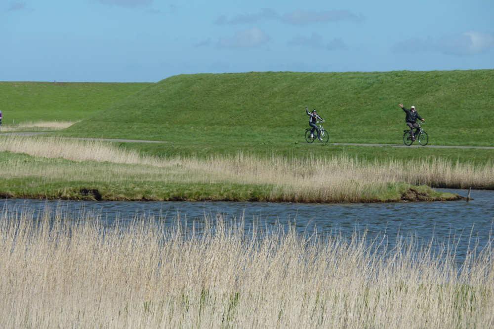 Nationales Park, Radfahren