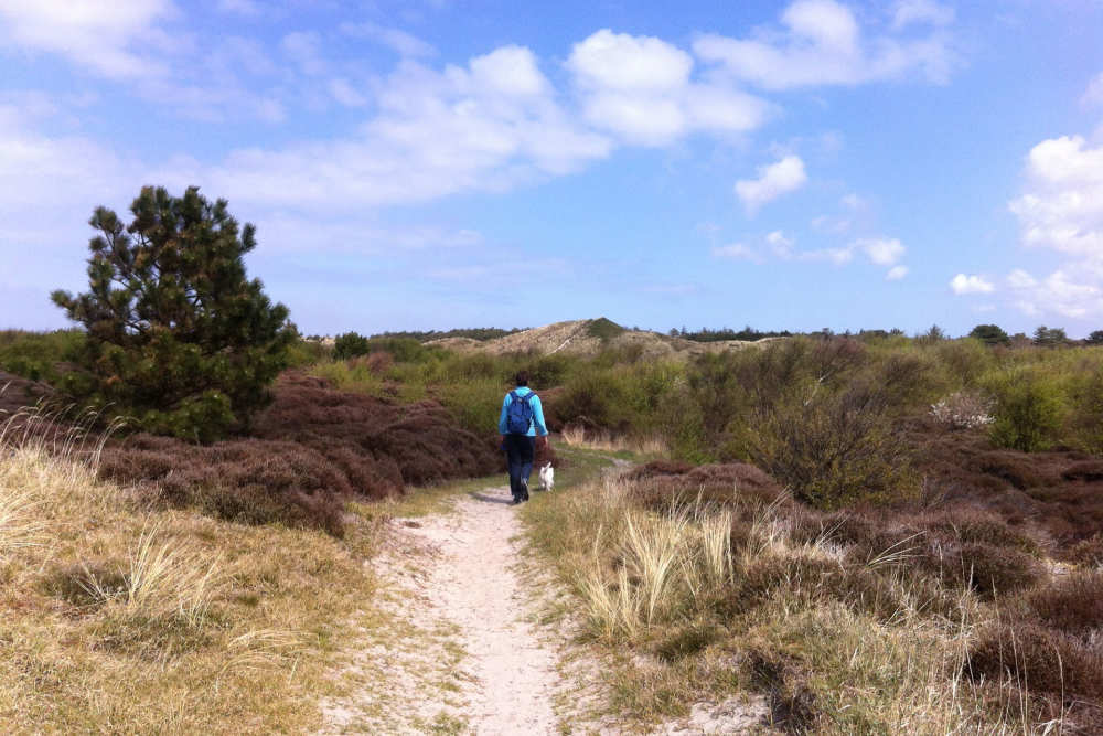 Wanderung in den Dünen
