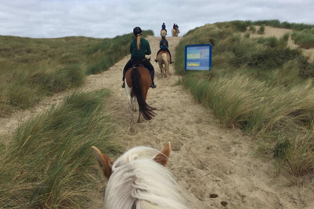 Horseback riding on Texel