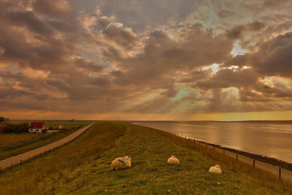 Fotoalbum November auf Texel