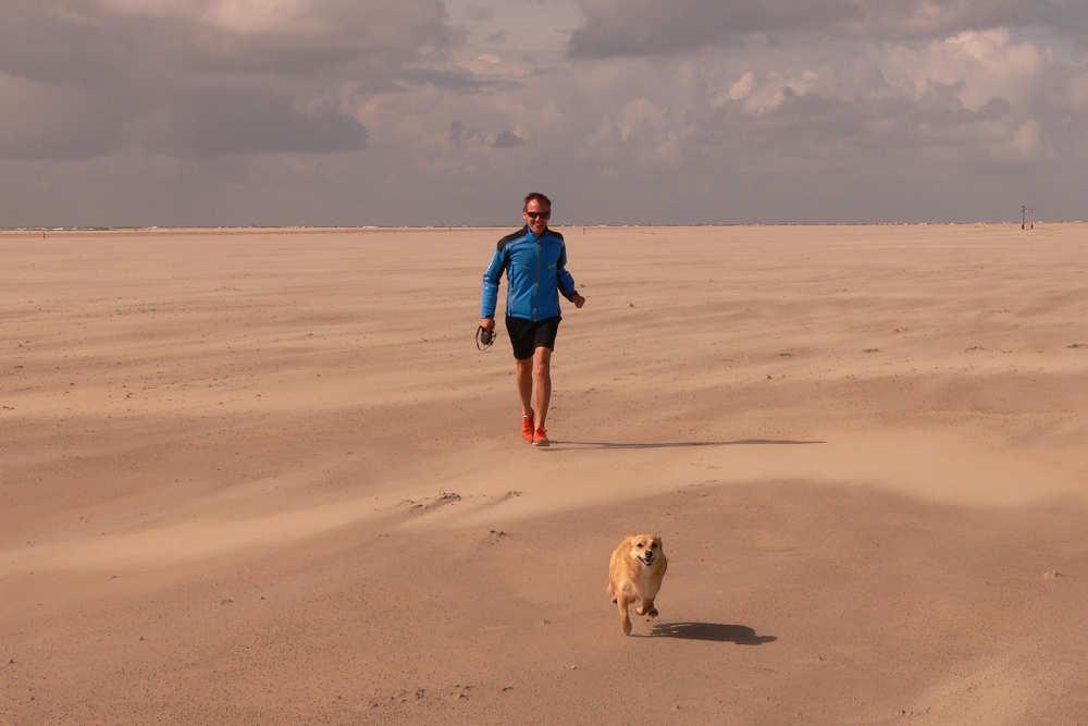 Wandern auf Strand mit Hund
