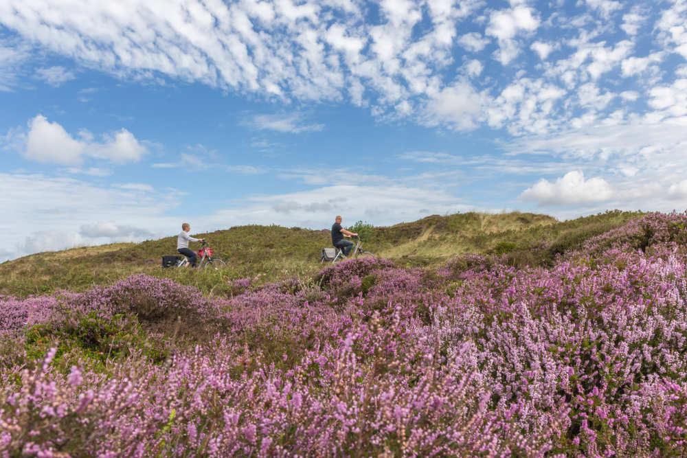 Radfahren im Nationalpark Duinen van Texel