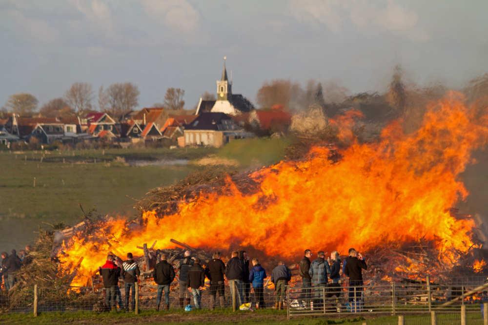 Meierblis, Texel