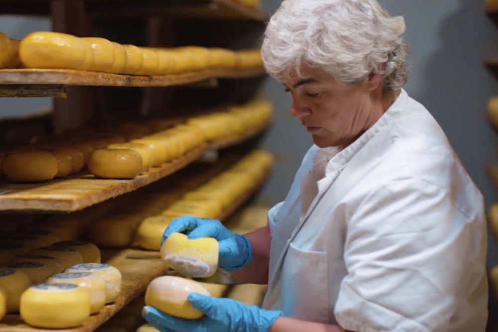 Cheese farm Wezenspyk, cheese, sheep cheese