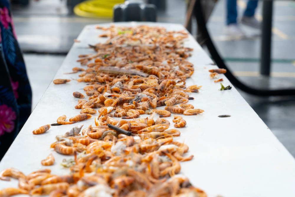 drying trip shrimp