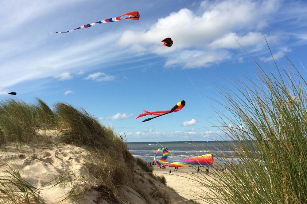 Vliegeren, Windfestival