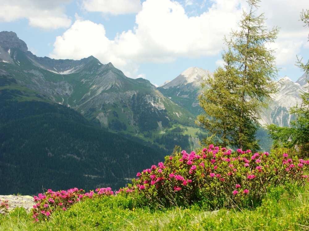 Fotoalbum Alpenresort Am Arlberg