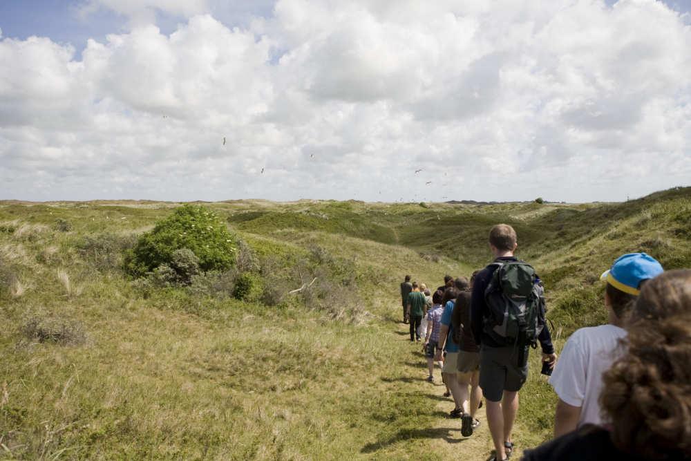 Vogelherkenningsexcursies