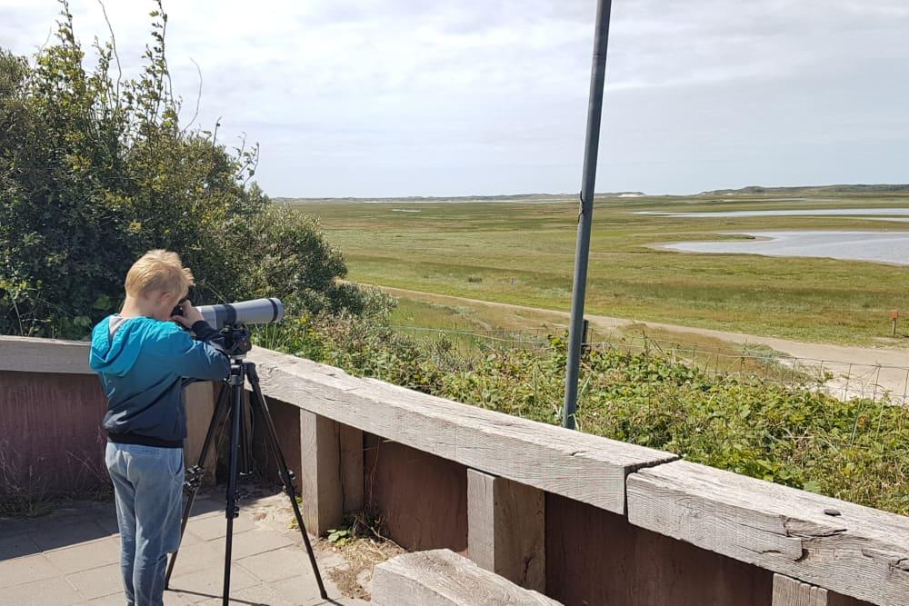 Vogelüberwachung