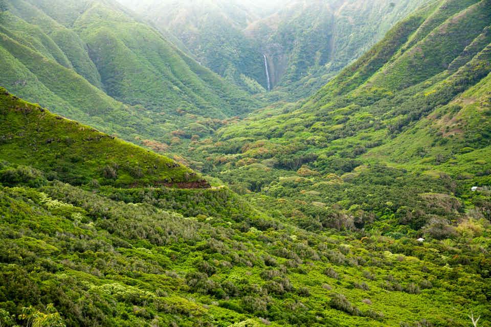 Molokai Halawa Valley Hipuapua Fal
