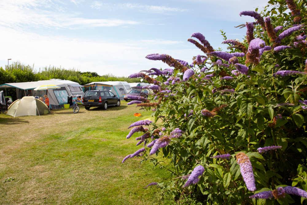 Stellplatzen auf Camping De Shelter