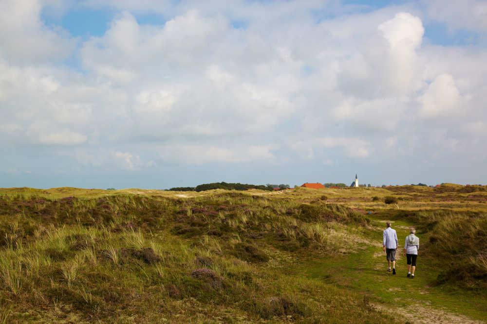 Den Hoorn, dunes