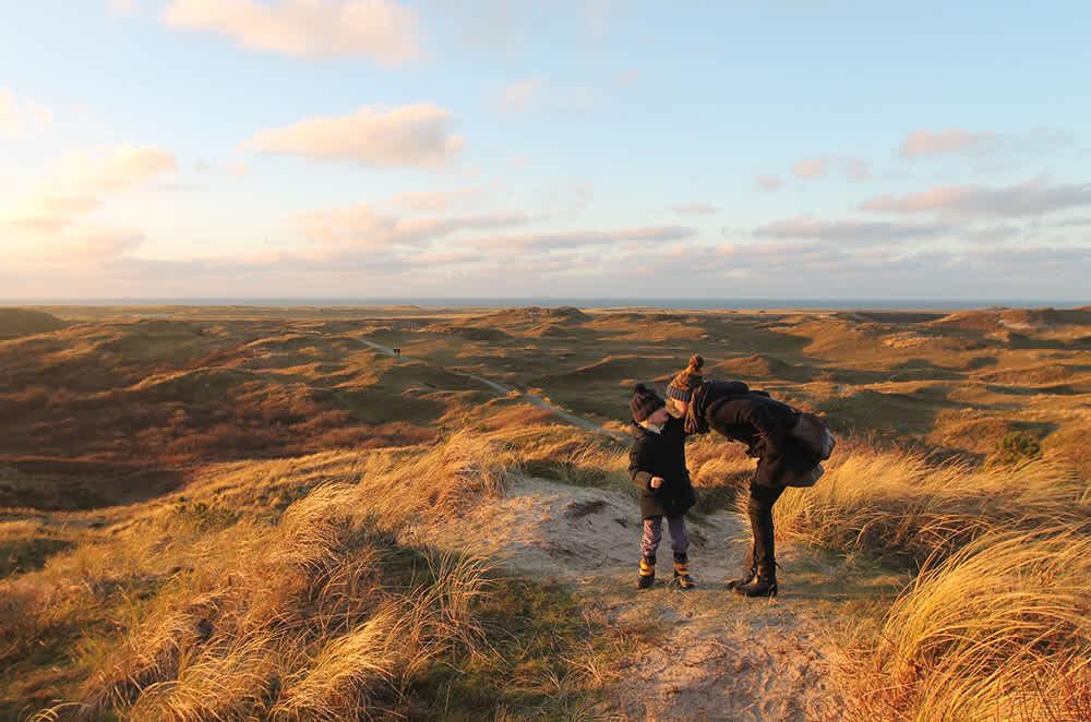 Fotoalbum Herbst auf Texel