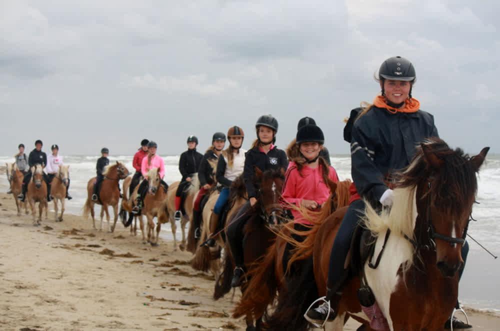 Pferd Reiten Gruppe