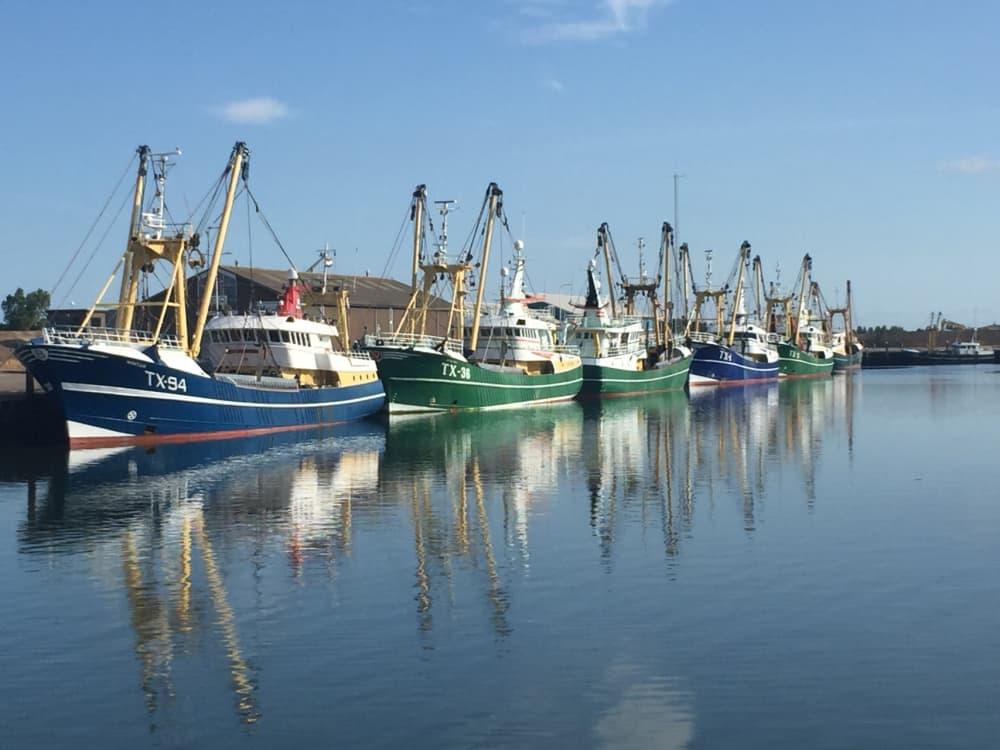 Hafen, Oudeschild