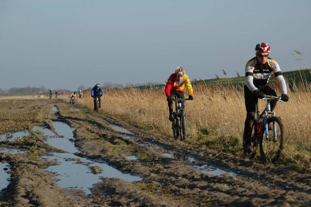 Super Sunday Texel, door het weiland