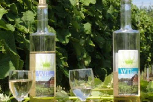 Texel Wein