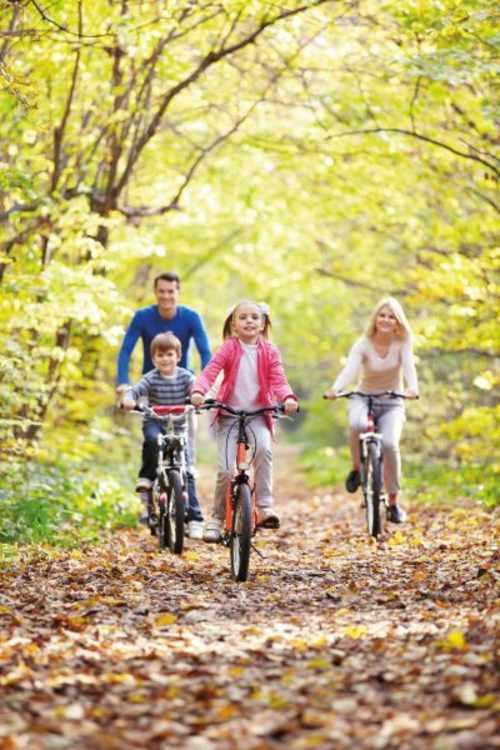 Bicycle rental and go-kart rental