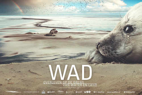 WAD Film Special (NL)