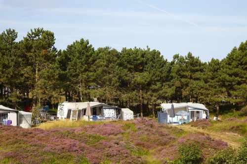 Seizoenplaats op Camping Loodsmansduin