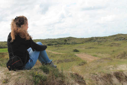 Nature on Texel