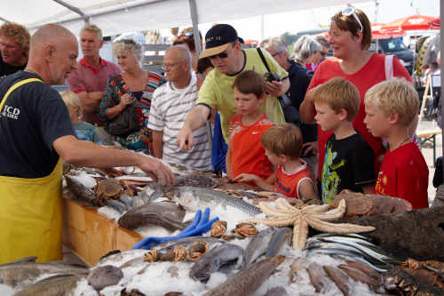 Texel's Fishery Day