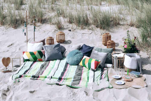 Picnic on Texel
