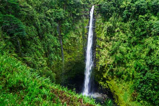 Big Island in One Day Tour