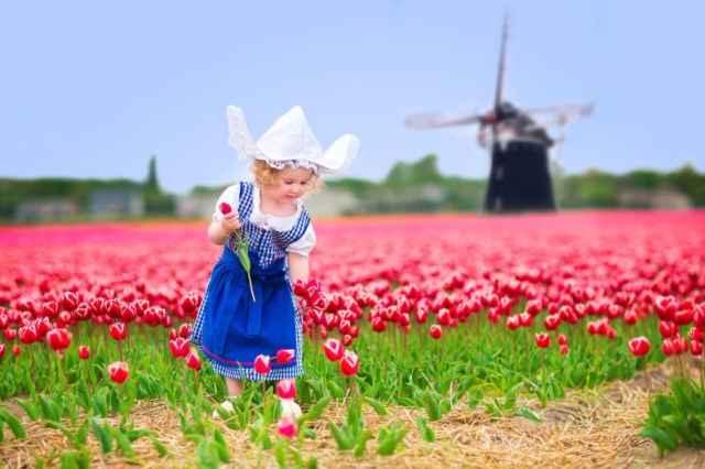 Tulpenroute 2021