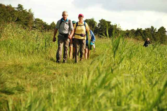 Join the Walk 3 days and walk through the National Park Weerribben Wieden