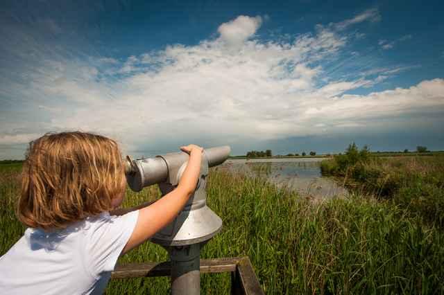 Meivakantie Nederland 2020 Vakantiepark in de Weerribben