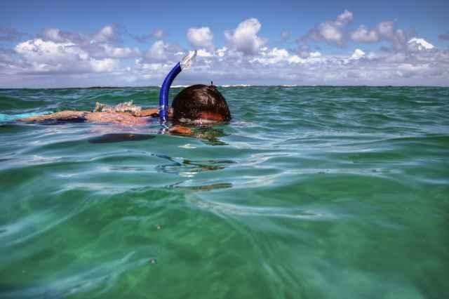 Snorkeling Catamaran Tour