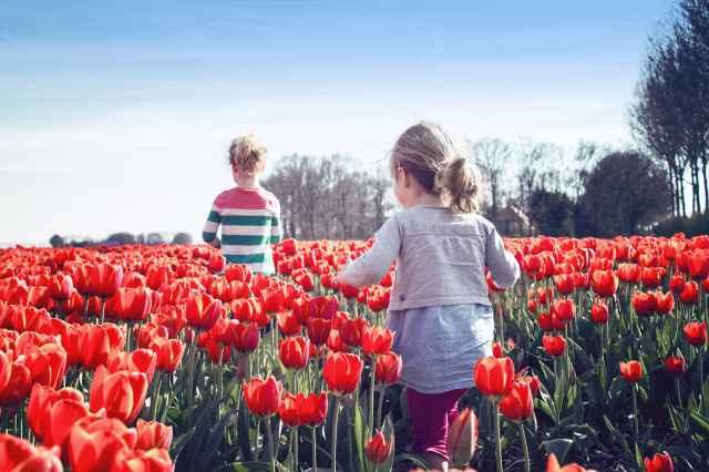 Erleben Sie den Mai