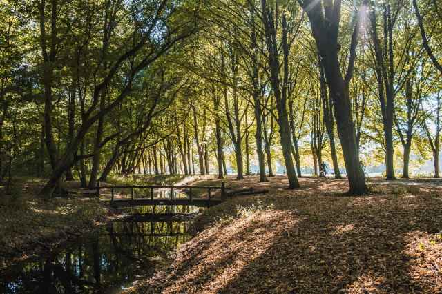 Citycamping Het Amsterdamse Bos