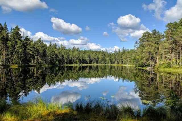 Nationaal park Norra Kvill