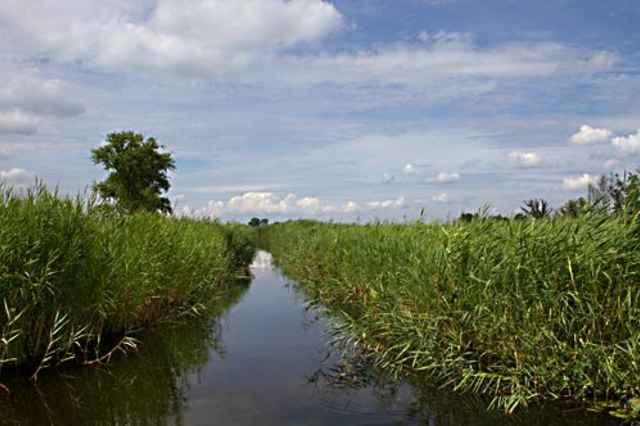 Nationaal Park Weerribben Wieden