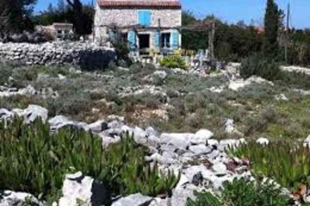 The Lošinj Aromatic Garden