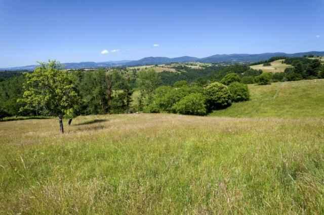 Parc Naturel Regional du Livradois - Forez