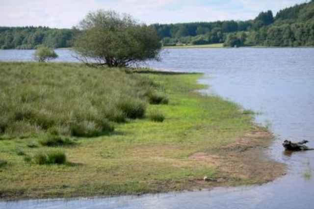 Regionaal natuurpark Morvan