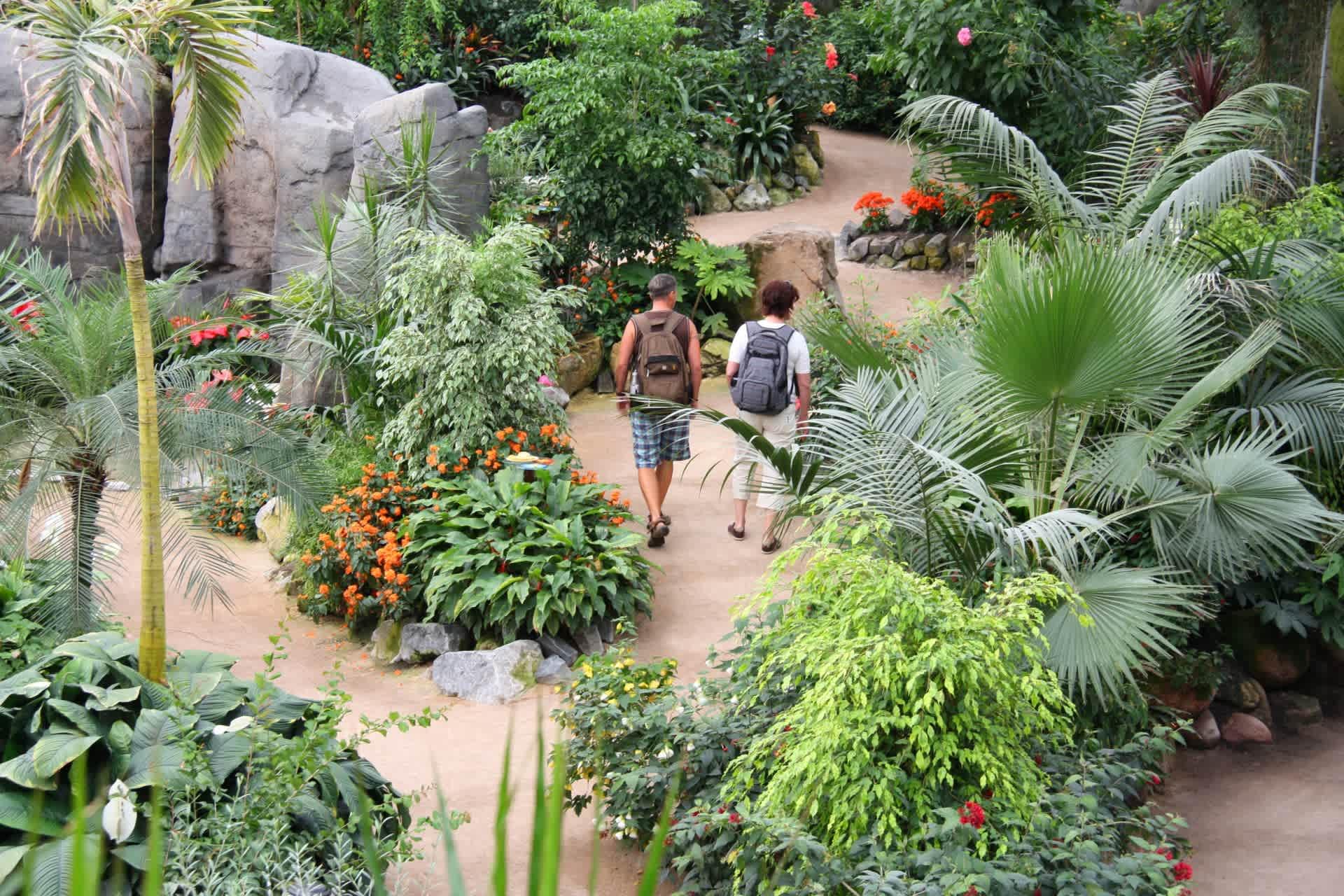 Luttelgeest orchid garden