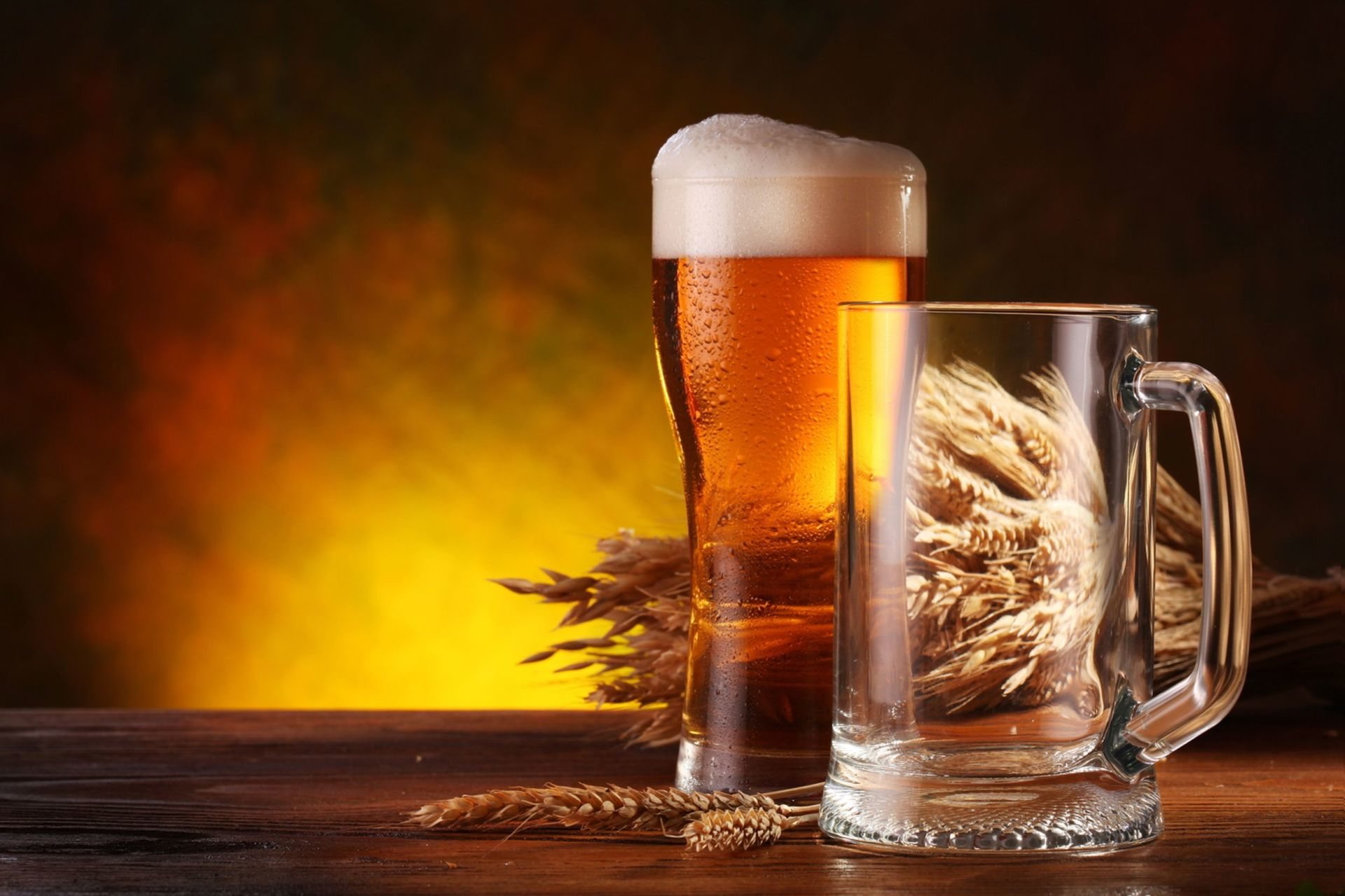 Gulpener Beer Brewery