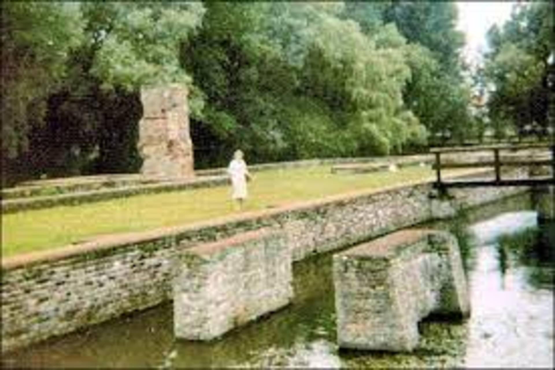 Slotruïne kasteel Egmond