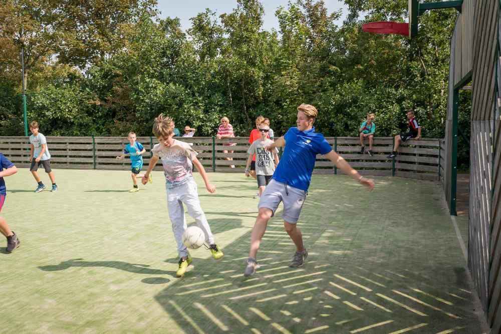 Vakantiepark De Krim, pannaveld