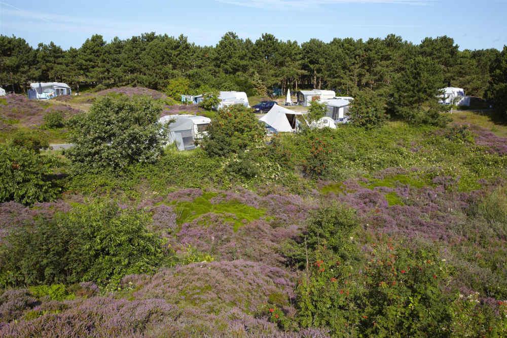 Camping Loodsmansduin, kampeerplaats XL met stroom