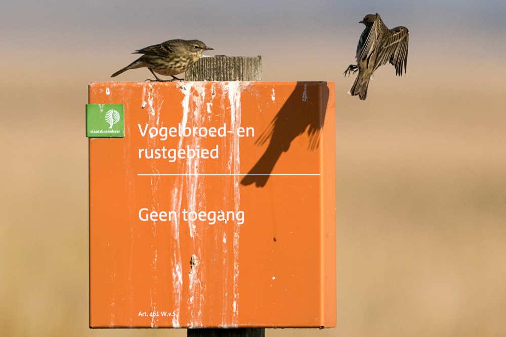 Bord voor vogelbroedgebied