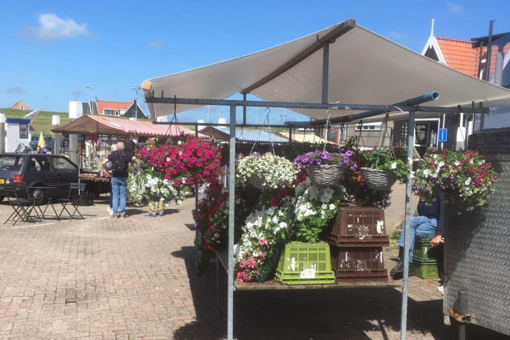 Blumenstand, Oudeschild